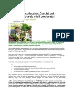 Atestatul de producator produse alimentare piata.docx