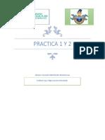 practica 1 formasion.docx