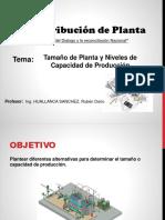 Tamaño y Capacidad de Planta 2019