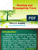 Planting and Propagating Trees.pptx