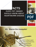 5 Facts about HeartWorms.pdf