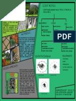 CONCEPT SHEET FINAL.pdf