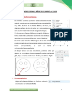 Tema2. Formas Basicas