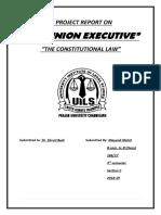 The Union Executive.docx