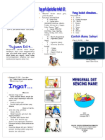 leaflet-diit-dm.doc