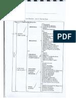 clasificacion-de-activo-pasivo-y-capital.pdf