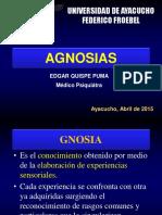 Agnosias