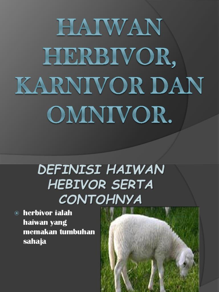 Haiwan Herbivor Karnivor Dan Omnivor