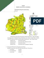 6. BAB 2 Profil PKM Kopo - 2018.docx