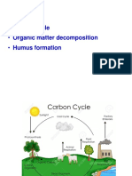 Carbon cycle.pptx