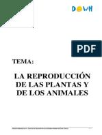Reproducción animal y vegetal