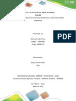 FASE 2_SUSANA CUELLAR_V1.docx