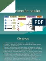 19 Comunicacion Celular