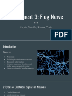 Experiment 3_ Frog Nerve