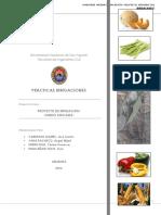 Informe Irrigación La Libertad