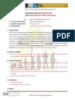 PLAN DE TRABAJO EESS EV.docx