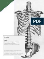 TEMA 4. Tórax.pdf