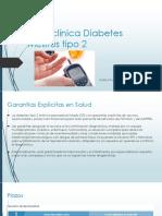 Guía Clínica Diabetes Mellitus Tipo 2