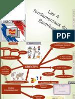 Infographie Du Bachibac