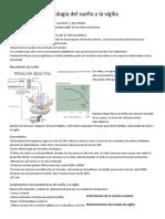 Fisiología del sueño y la vigilia.pdf