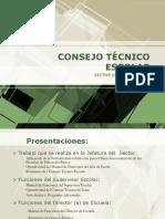 Consejo Tecnico Escolar Sector 19 Federalizado