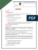Tema 5                 TRAMPAS.docx