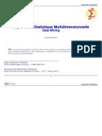 DataMining.pdf