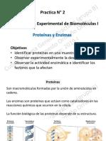 Práctica 2 - Proteínas-Enzimas - Prof. Ernesto Ormeño