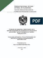 Tesis B733_Vil.pdf