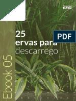 ebook-gratuito-Rt-Dia-05.pdf