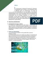 contaminación en mercados.docx
