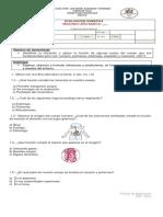 Evaluación Cs. Naturales Cuerpo Humano 2° Años (1).docx