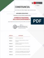 Curriculum Segun Ministerio de Trabajo