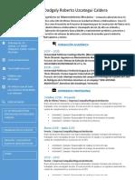Modelo Nuevo CV.docx