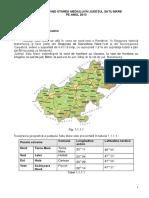 SM-raport-an-2013.pdf
