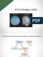 Alteracion de La Fisiologia Celular