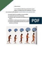 Teoría de la Evolución.docx