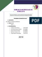 INTRODUCCIÓN-PRUEBAS-DIAGNOSTICAS.docx