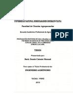 propagacion del colle.pdf