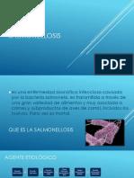 Salmonellosis salud publica.pptx