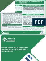auditor lider HSEQ.pdf