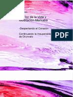 La-flor-de-la-vida-Americo.pdf
