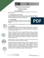 Terminos de Referencia I-012825