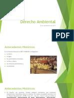 Derecho Ambiental_Antecedentes, Definicion