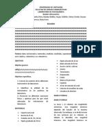 Formato informe _Laboratorio(1).docx