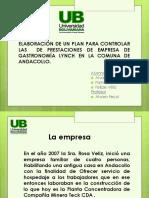PLAN DE ELABORACION DE PROYECTOS