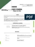 Hoja de vida Alejandro Sanchez (1)-converted.docx
