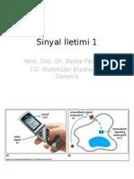Hücre Biyolojisi 2 / Sinyal İletimi 1