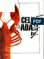 Celladam-kor