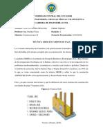 CONSULTA TÉCNICA GREB.docx